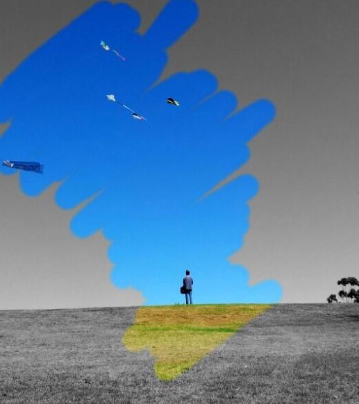 Man watching kites